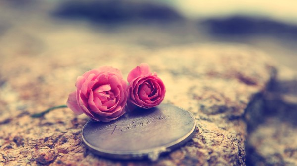 Group Of Heart Touching Wallpapers