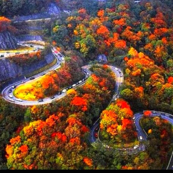 154 best images about October <b>Roads</b> on Pinterest