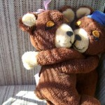 36 Celebrate Hug a Bear Day…Spread Love!!!