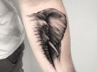 Inspirational Elephant Tattoo Design Ideas That You Will Certainly Like