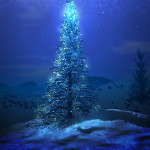 Christmas Tree Wallpapers and Backgroud
