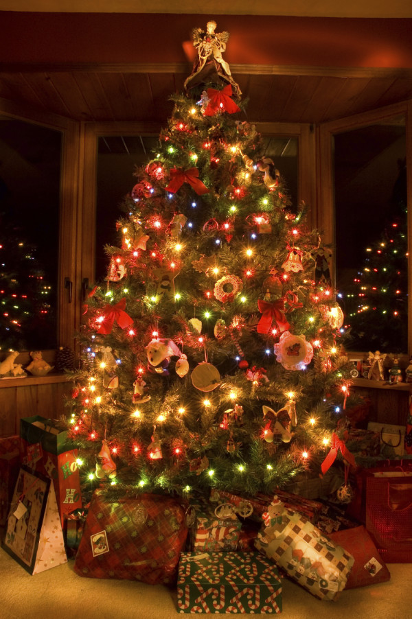 amazing Christmas Tree Wallpapers