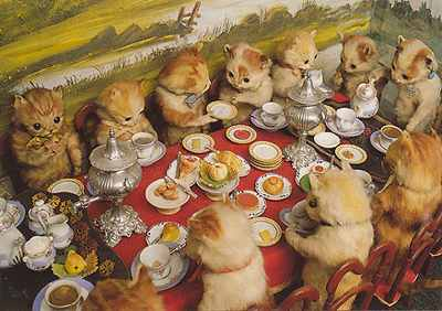 Beautiful Dinner with cats