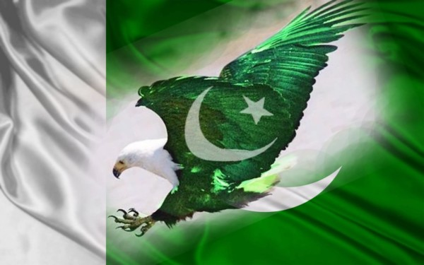 Eagle With Pakistan Flag